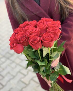 Длинная красная роза