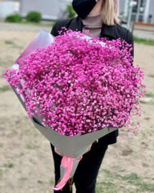 Розовый гипсофил